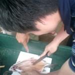 三浦さんに教えてもらいながら、初めて魚をさばいてみました。